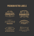 premium retro labels vector image