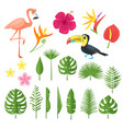 set of elements for summer vector image