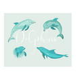 set of four dolphins vector image