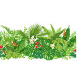 tropical plants seamless border vector image