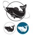 walleye vector image vector image