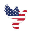 beautiful peace dove with usa flag vector image