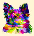 colorful head chihuahua vector image vector image