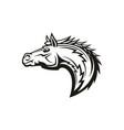 horse head monochrome symbol equestrian mascot vector image
