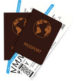 international passports and boarding pass tickets vector image vector image