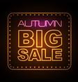 neon sign autumn big sale vector image