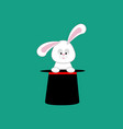 rabbit in magic hat vector image vector image