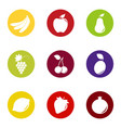 set of fruit and berry icons on color background vector image vector image