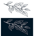 stylized hand drawn tree branch freehand drawing vector image
