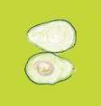 two halves avocado on a green background vector image vector image