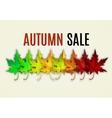 Fall sale design vector image