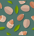 almond nuts seamless pattern vector image vector image