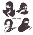arabian beauty vector image