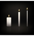 Candle set vector image