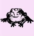 edible frog vector image