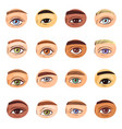 eye human eyesight vision beauty female vector image vector image