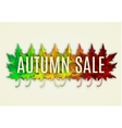 Fall sale design vector image vector image