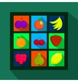 Fruits and berries flat icons with long shadow vector image vector image