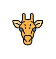 giraffe camelopard head flat color line icon vector image