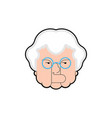 good grandmother face cheerful grandma head vector image vector image