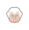 good grandmother face cheerful grandma head vector image vector image