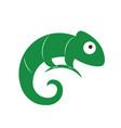 lizard symbol logo template vector image vector image