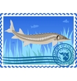 Postage stamp Sturgeon vector image vector image