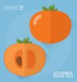 raw diospyros icon vector image vector image