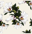 seamless floral hibiscus pattern background vector image