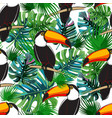 seamless toucan pattern summer background vector image vector image