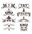 swirls element decorative vintage collection vector image