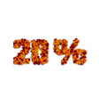 20 percent autumn leaves sale sign vector image vector image