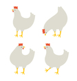 4 chickens vector image vector image
