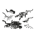 branches trees black silhouette vector image vector image