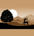 deer standing on the hill vector image