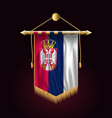 flag of serbia festive vertical banner wall vector image vector image