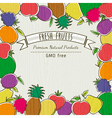 frame of organic fruits vector image vector image