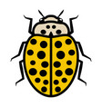 ladybug logo icon with twenty two black spots vector image