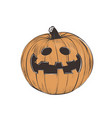 pumpkin halloween pumpkin vector image