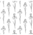 seamless pattern with flowers iris vector image vector image