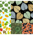 seamless pattern with leaves background vector image vector image