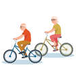 Senior man and a woman riding on a bicycle vector image