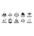 set vintage basketball team club league logo vector image