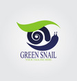 snail with green leaf logo vector image vector image