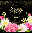 spring collection background with peones vector image