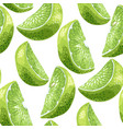 lime slices seamless pattern set in realistic vector image vector image