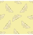 Seamless pattern with butterfly Bombyx mori vector image vector image
