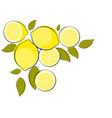 abstract lemon natural background vector image vector image