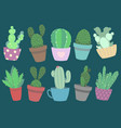 cacus and succulent plant mix vector image
