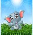 cartoon baby elephant sitting in the grass on a ba vector image vector image